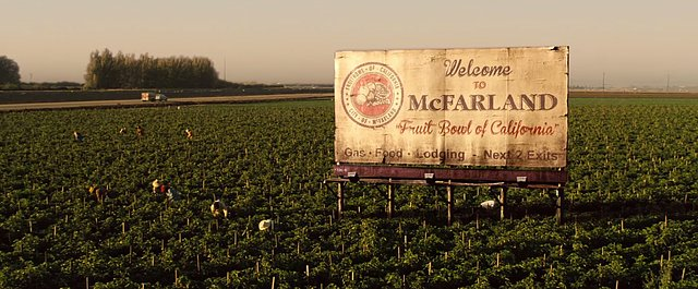 08MAR2015 - McFarland USA Pic 2